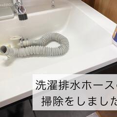 カビダッシュ ガンコすぎる最強カビ専用・特濃ストロングジェル  | リベルタ(防カビ洗剤)を使ったクチコミ「洗濯排水ホース掃除  洗濯機の排水ホース…」