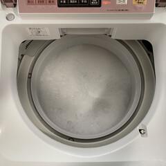 カビ対策/オキシ漬け/洗濯機/洗濯槽洗浄/オキシクリーン オキシクリーンで洗濯槽の洗浄をしました。…