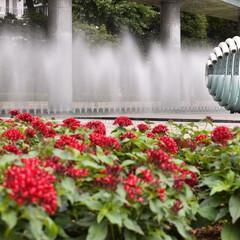 和田倉噴水公園/おでかけワンショット/噴水/はじめてフォト投稿