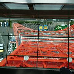 みんなにおすすめ 東京タワーの展望台から下を見るとこんな感…