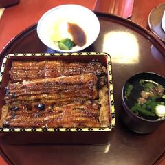 至福のひととき/おでかけ 今日のランチは魚栄のうなぎ。家族全員が好…(1枚目)