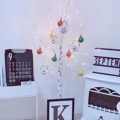 クリスマス飾りチョコをHallow.../クリスマス飾りチョコ/Halloween飾り/halloween/コストコ飾りチョコ/チョコレート/... 去年購入したニトリの白樺ツリーでHall…