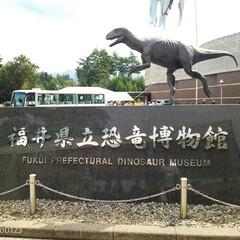 おでかけワンショット/旅行/おでかけ/博物館/勝山市/観光スポット/... 福井県立恐竜博物館