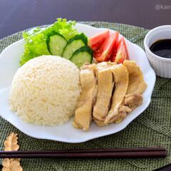 kaldi/カルディ/シンガポール料理/タイ料理/アジア料理/カフェ風プレート/... 今日のお昼ご飯 カオマンガイ  カルディ…