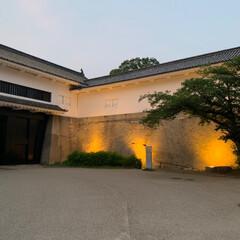 大阪城公園/無理せず続ける事が大事かな/散歩みたいなウォーキング 昨日の夜散歩は大阪城公園✨ 大阪城ってホ…(4枚目)