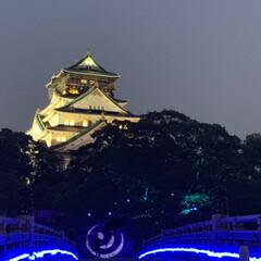 大阪城公園/無理せず続ける事が大事かな/散歩みたいなウォーキング 昨日の夜散歩は大阪城公園✨ 大阪城ってホ…(2枚目)