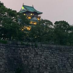 大阪城公園/無理せず続ける事が大事かな/散歩みたいなウォーキング 昨日の夜散歩は大阪城公園✨ 大阪城ってホ…(3枚目)