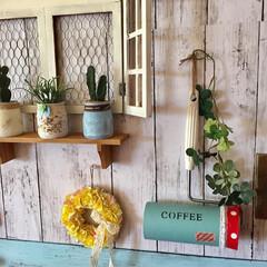 カフェ風DIY/カフェ風インテリア/カフェ風/コロコロケース/コロコロカバー/紙コップ利用/... 以前リメイクしたらコロコロカバーです。カ…