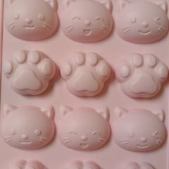 猫シリコン型/シリコン型/ホットケーキ型/ハロウィーン/百均/ダイソー ホットケーキ型が欲しくて見ていたら ハロ…(2枚目)