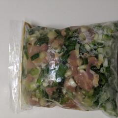 料理/YouTube YouTubeを見て冷凍保存食、ねぎ塩ガ…