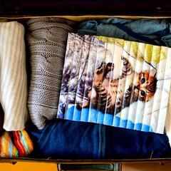 bookcover/Coverstort/ブックカバー/本棚/本/マンガ/... 旅行鞄にマンガと猫を忍ばせて