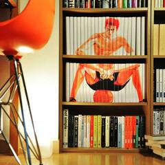 bookcover/coverstory/ブックカバー/本/本棚/収納/... この方の絵は、もうアートの域だと思います…