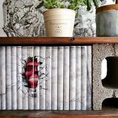 bookcover/coverstory/ブックカバー/本/本棚/収納/... テーマ「進撃の本棚」(1枚目)