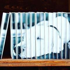 犬/bookcover/coverstory/本棚/本/収納/... 韓国の旅行で見かけたカフェの犬。(1枚目)