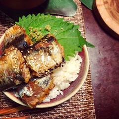 ズボラ飯/簡単レシピ/料理家/イワシ料理/丼もの/おうちカフェ/... 鰯の甘煮丼。 手作り柚子胡椒をのせました。