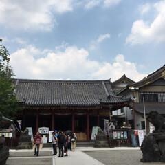 みんなにおすすめ 浅草 神社巡りしました。 シメはスカイツ…(2枚目)