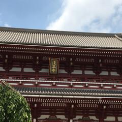 みんなにおすすめ 浅草 神社巡りしました。 シメはスカイツ…(3枚目)