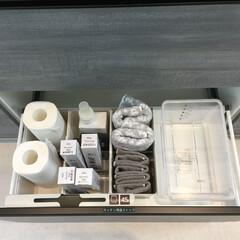 YAMAZAKI/山崎実業 密閉 シンク下米びつ 5kg 計量カップ付 クリア | 山崎実業(米びつ)を使ったクチコミ「キッチンの引き出し収納は、上から見た時に…」