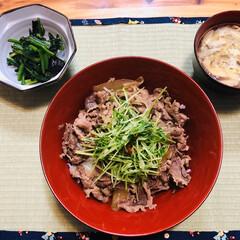 食事情 牛丼に豆苗のニンニク炒め乗せ。