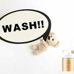 ファーファ ファインフレグランス ウォッシュ オム 詰替え 360ml クリスタルムスクの香り | ファーファ(液体洗剤)を使ったクチコミ