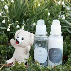 ファーファココロ柔軟剤 本体 500ml 生花の香り | ファーファ(柔軟剤)を使ったクチコミ