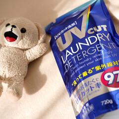 洗濯/洗剤/日焼け止め/紫外線対策/紫外線/UVカット/... 毎日のお洗濯で紫外線をカットできるUVカ…