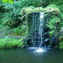 滝/池/おでかけワンショット 天気が良くて暑い日でしたが、流れる落ちる…