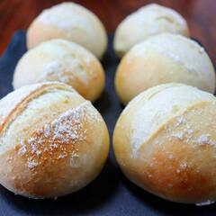 パンづくり/パン作り大好き/パン作り/おうち時間/オーバナイト発酵/まるパン/... 低温長時間発酵で作ったプチパン🌼  * …