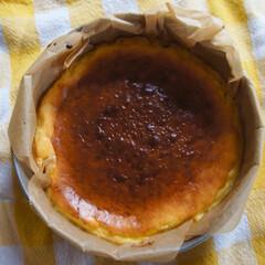 バスクチーズケーキ/手作りケーキ/お菓子作り/手作りお菓子/こんがりグルメ/猫派/... 今日初めてバスクチーズケーキを焼いてみま…(1枚目)
