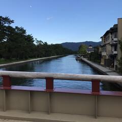 みんなにおすすめ 天橋立の橋です。なんと、たまに船が通る為…(1枚目)