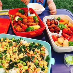 ピクニック弁当/ピクニック/幸せ/ごはん/公園/1歳/... 家族3人でお外で食べるお弁当は幸せの塊!…