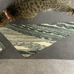 手編み まだまだ もっと大きく! 枯山水ショール