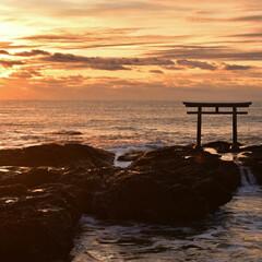 大洗磯前神社/茨城県/三度の飯より旅行好き/旅行 久々投稿ー  旅行行けないのがツラいです…