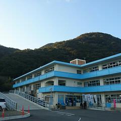 高知県/水族館/三度の飯より旅行好き/おでかけ/旅行/おでかけワンショット 室戸の廃校水族館ー🐟  プールに鮫とウミ…