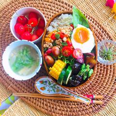家庭菜園の野菜でお料理/家庭菜園/手作り/オーガニック/野菜たっぷり/野菜/... 😋今日のおべんとう〜♬  久しぶりの 晴…