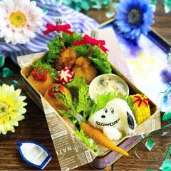 お弁当作り楽しもう部/お昼が楽しみになるお弁当/スヌーピー弁当/キャラ弁/娘弁当/ランチ/... . ✧*̣̩⋆̩ᵍᵒᵒᵈ ᵐᵒʳᐢⁱᐢᵍ…(2枚目)