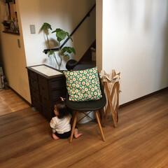 ランドリーバスケット/イームズチェア/ガード/赤ちゃん/階段/収納/... 娘が階段を登り始めたから、棚と椅子でガー…