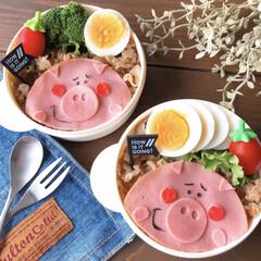 幼稚園弁当/キャラ弁/お弁当/はじめてフォト投稿/セリア 豚丼なのでハムで作ったブタちゃんを🐷  …