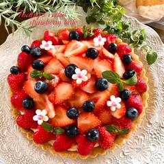 いちごケーキ/いちご/いちごタルト/手作りケーキ/フォロー大歓迎/至福のひととき/... 本日、初投稿です◟̆◞̆♡ 宜しくお願い…