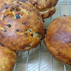 大豆粉/カカオニブ/ドライイチジク/手作りパン カカオニブとドライイチジクの 大豆粉パン…