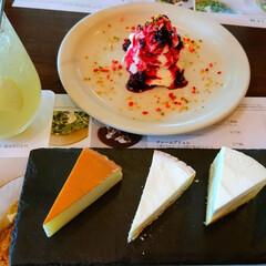 しあわせ/お腹いっぱい/食べ比べ/チーズケーキ/はじめてフォト投稿/至福のひととき チーズケーキ、5種類食べくらべ。 しあわせ