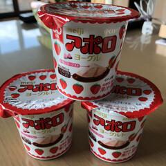 新商品/ヨーグルト/アポロチョコ アポロ大好きだからつい買ってしまった❣️…