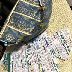 使わない生地/サンプル作成/型紙製作/娘オーダー/ボディバッグ/雑貨/... 今週は息子がテスト週間。 週末にあった学…