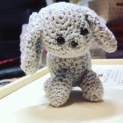 チビと命名/トイプードル/編み物/毛糸/あみぐるみ/ハンドメイド/... 昨日作った子です トイプードルのチビちゃ…