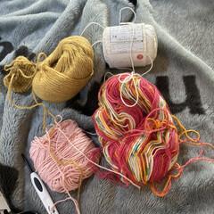 やる気スイッチoff/なかなか形にできない/設計は出来上がってる/かぎ針編み/編み物/あみぐるみ/... 頭の中ではもう完成してて、設計も出来上が…