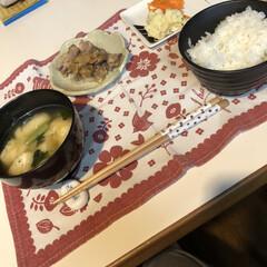 夕飯風景/白米/小松菜と油揚げ/お味噌汁/人参サラダ/マッシュポテト/... 今日の夕飯 生姜焼き定食‼️ 玉ネギなか…