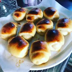 小麦粉もやばい/強力粉がもうない/自粛生活29日目/ゴールデンウィークは色々やりたい/空っぽの冷蔵庫を潤わせる/料理はお休み/... 今日はパン作りの日(朝は花の写真アップし…