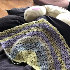 パティシェラメ/ラメ入り/かぎ針編み/編み物/DAISO/バンドメイト/... 現在編み編み中のもの ショールです  ま…