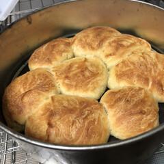 確定申告/明日はお出かけ/てごねパン/モンキーブレット/パン作り/キッチン/... お久しぶりのパン作り 手捏ねてでモンキー…