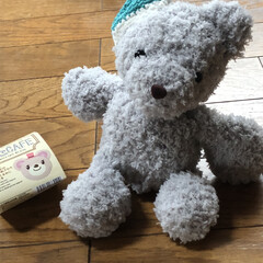 くまちゃん/もこcafe使用/かぎ針編み/あみぐるみ/編み物/やっと編めた/... 昨日作ったトイプードルの双子ちゃんの絵描…